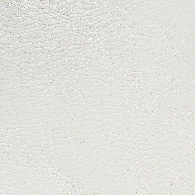 White Leather Finish Option