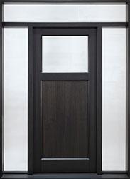 DB-111PS 2SL TR CST Door