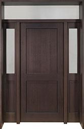 DB-201PT 2SL TR CST Door