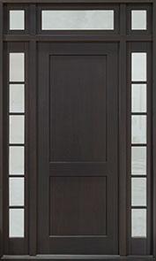 DB-201PW 2SL TR CST Door