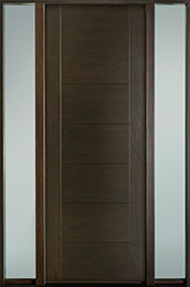 DB-EMD-711T 2SL-CG Door
