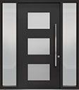 DB-PVT-824 2SL18 48x96 Single with 2 Sidelites Pivot Door
