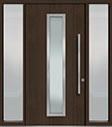 DB-PVT-E4 2SL18 48x96 Single with 2 Sidelites Pivot Door