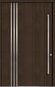 DB-PVT-L1 60x96 Single Pivot Door