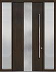 DB-PVT-M2 2SL18 48x108 Single with 2 Sidelites Pivot Door