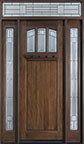 DB-211T 2SL TR Mahogany-Dark Mahogany Wood Entry Door