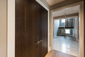 Modern Interior Door.  Closet Double Door Modern Style DBIM-MD1005