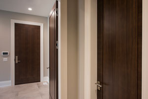 Modern Interior Door.  Interior Doors, Way to Mudroom DBIM-MD1005